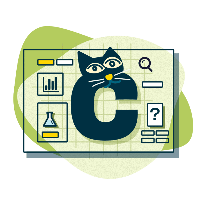 Illustration of a cat character in the shape on C, The cat is in front of an interface full of graphs, question marks and magnifying glasses.